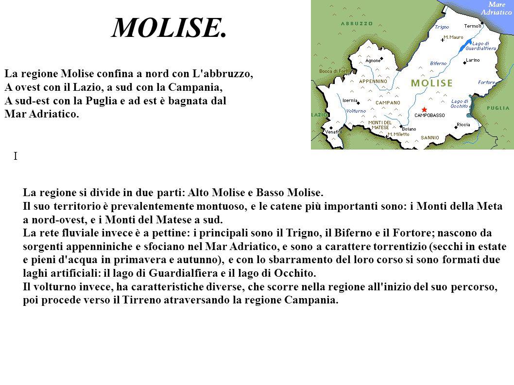 MOLISE. La regione Molise confina a nord con L abbruzzo,