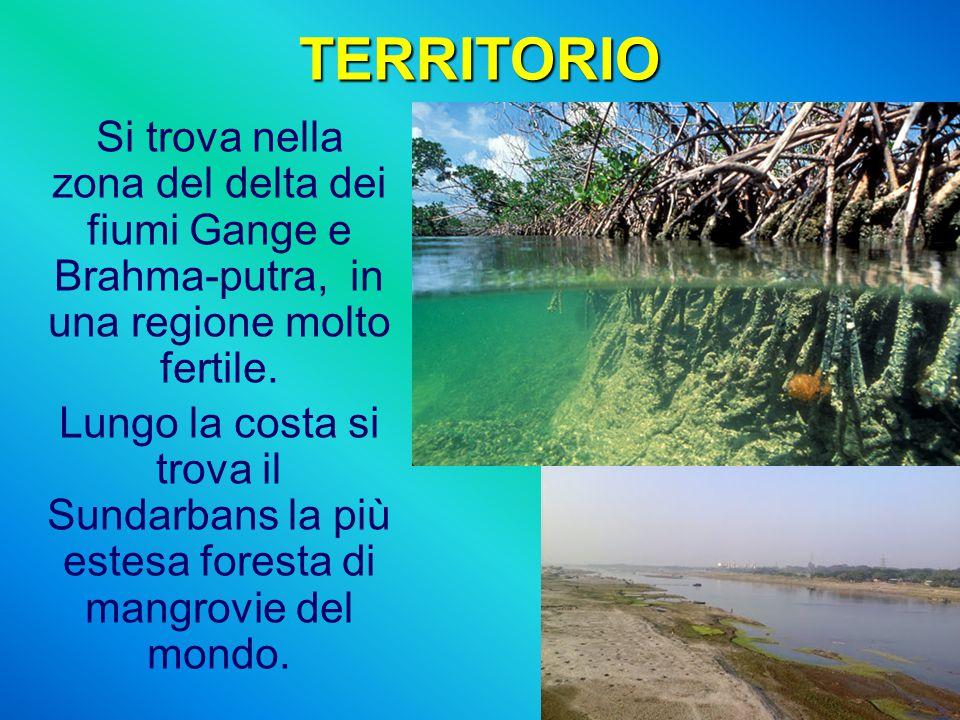 TERRITORIO Si trova nella zona del delta dei fiumi Gange e Brahma-putra, in una regione molto fertile.