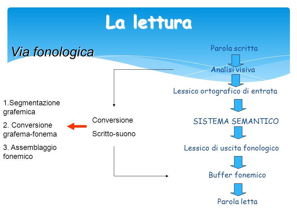 La lettura Via fonologica Parola scritta Analisi visiva