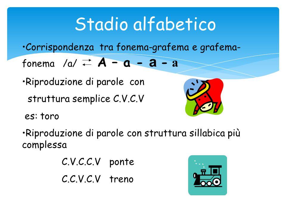 Stadio alfabetico Corrispondenza tra fonema-grafema e grafema-fonema /a/ A – a - a - a. Riproduzione di parole con.