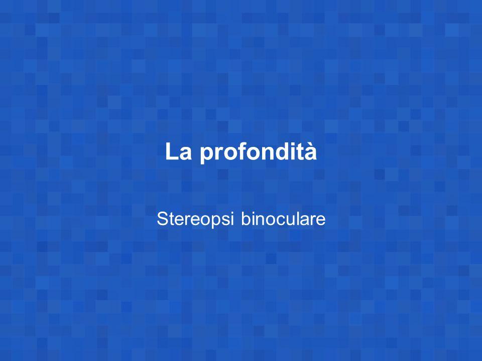 La profondità Stereopsi binoculare
