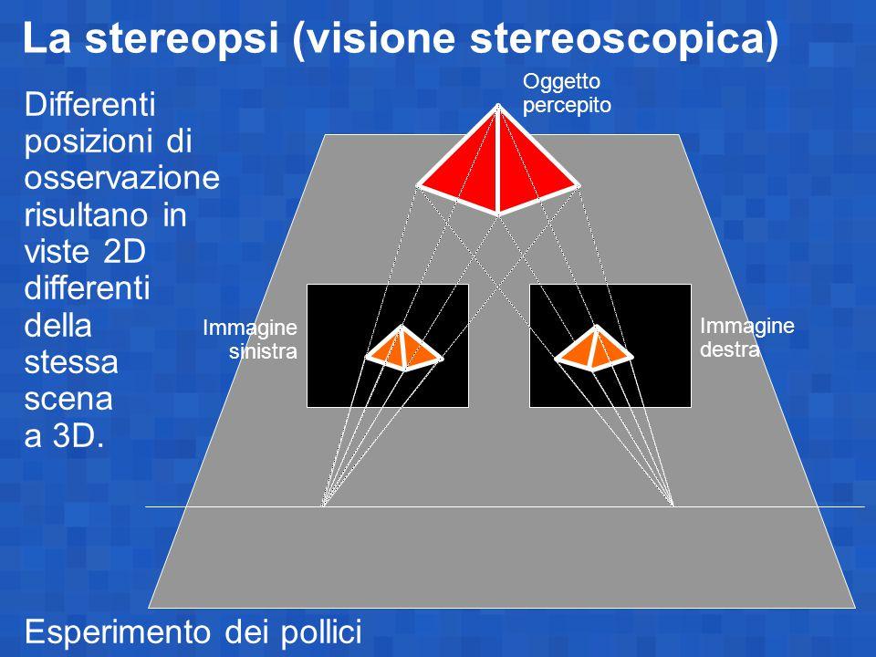 La stereopsi (visione stereoscopica)