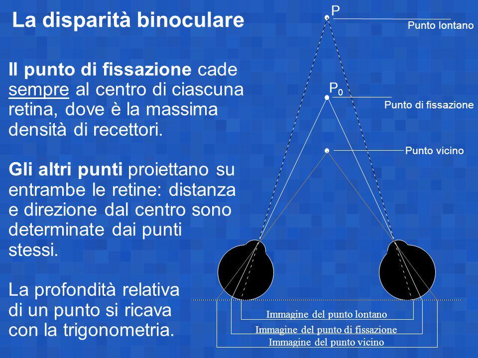 La disparità binoculare