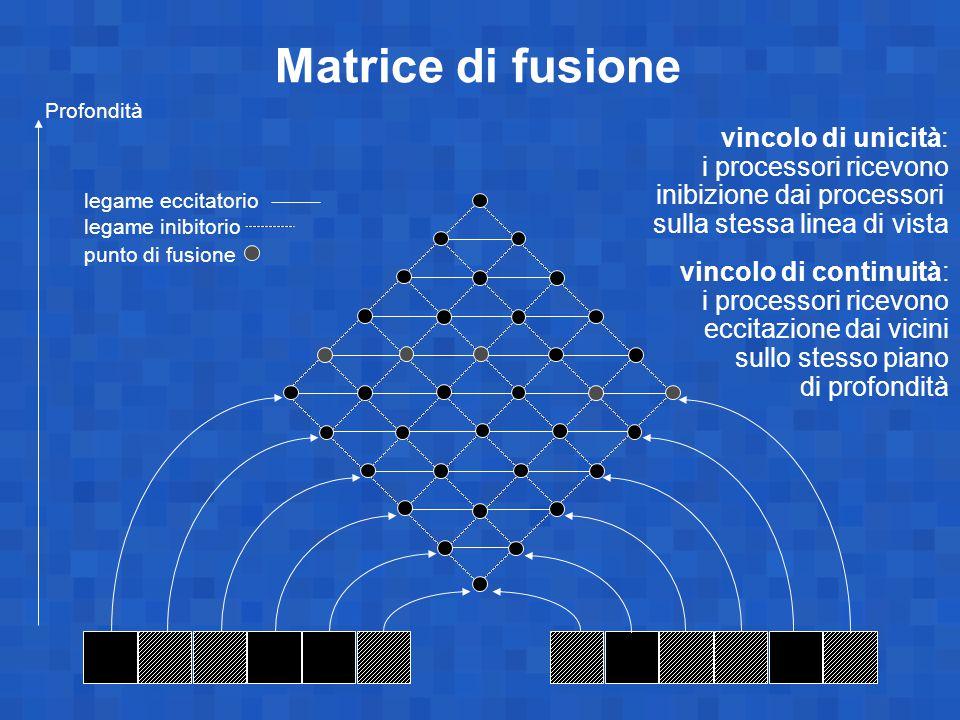 Matrice di fusione vincolo di unicità: i processori ricevono