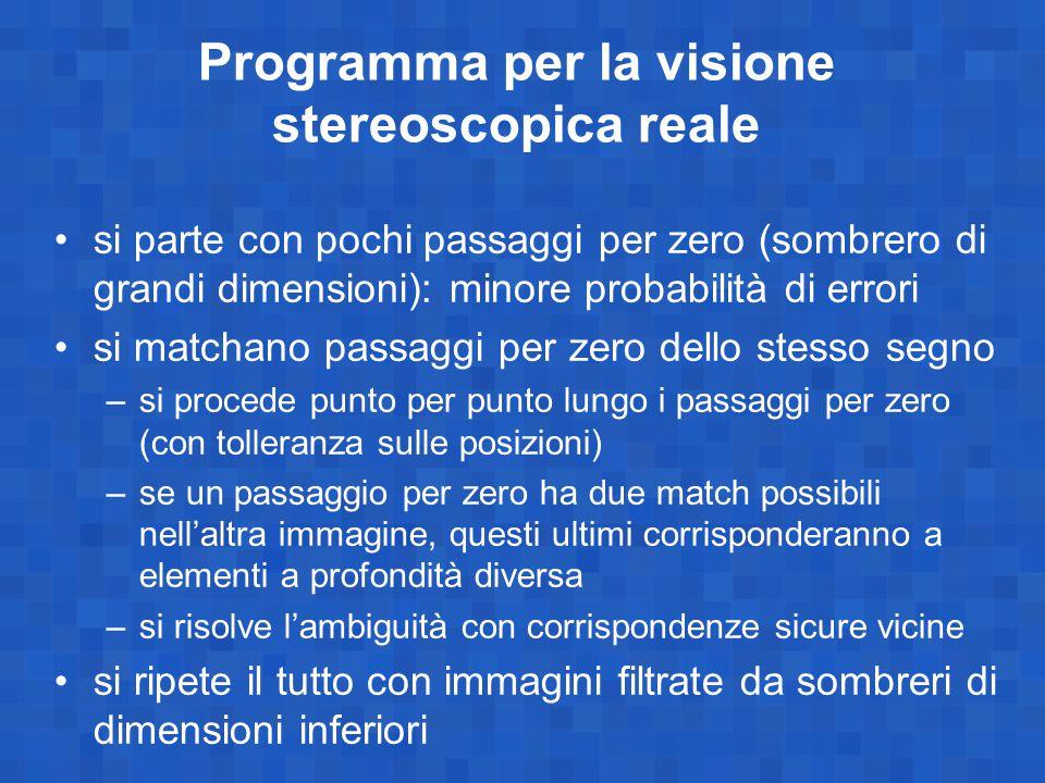 Programma per la visione stereoscopica reale