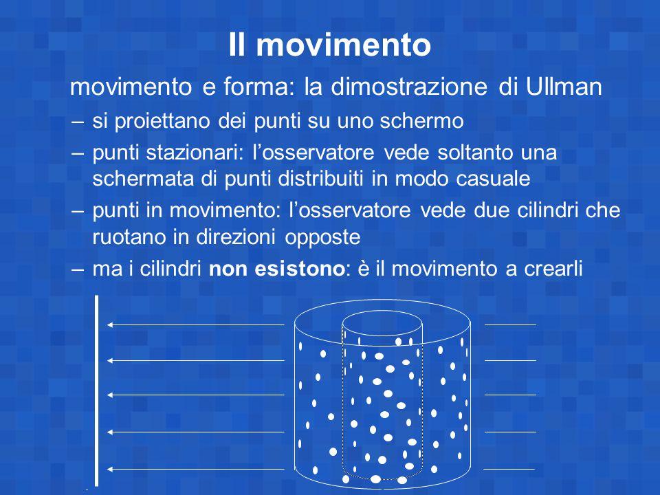 movimento e forma: la dimostrazione di Ullman