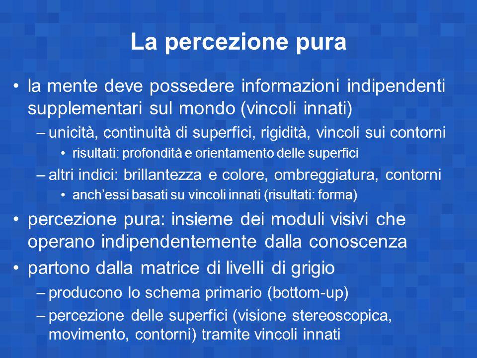 La percezione pura la mente deve possedere informazioni indipendenti supplementari sul mondo (vincoli innati)