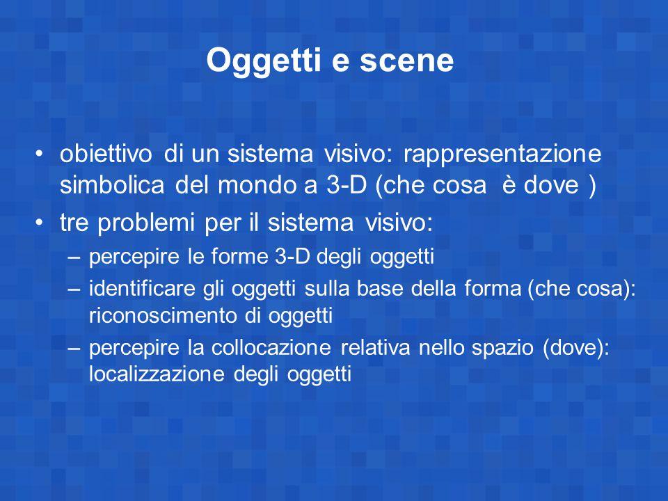 Oggetti e scene obiettivo di un sistema visivo: rappresentazione simbolica del mondo a 3-D (che cosa è dove )