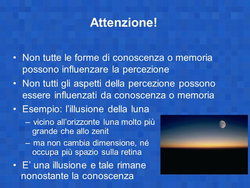 Attenzione! Non tutte le forme di conoscenza o memoria possono influenzare la percezione.