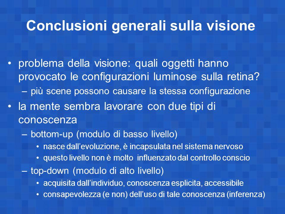 Conclusioni generali sulla visione