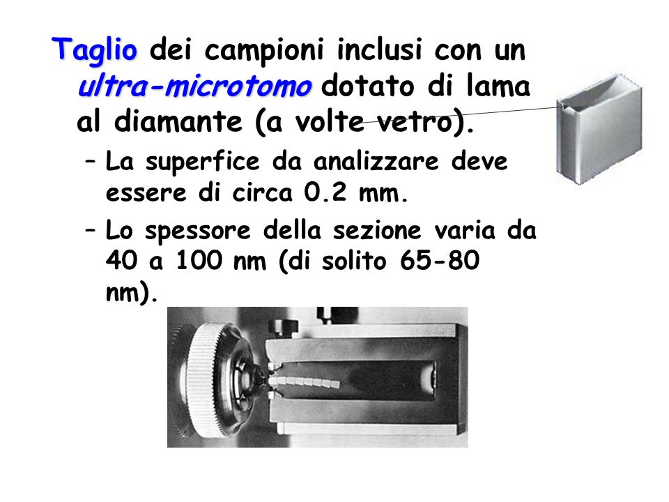 Taglio dei campioni inclusi con un ultra-microtomo dotato di lama al diamante (a volte vetro).