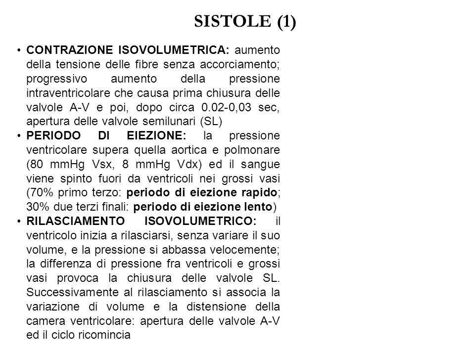 SISTOLE (1)