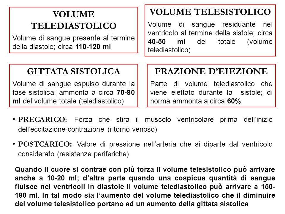 VOLUME TELEDIASTOLICO