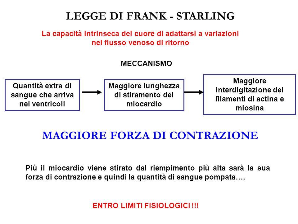 LEGGE DI FRANK - STARLING MAGGIORE FORZA DI CONTRAZIONE