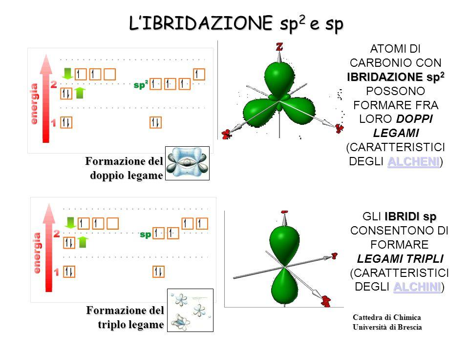 L'IBRIDAZIONE sp2 e sp ATOMI DI CARBONIO CON IBRIDAZIONE sp2 POSSONO FORMARE FRA LORO DOPPI LEGAMI (CARATTERISTICI DEGLI ALCHENI)