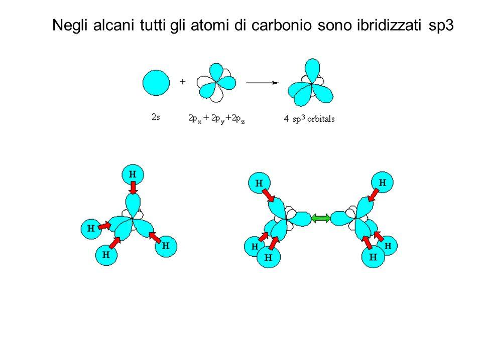 Negli alcani tutti gli atomi di carbonio sono ibridizzati sp3