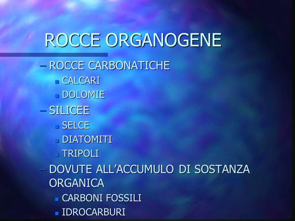ROCCE ORGANOGENE ROCCE CARBONATICHE SILICEE