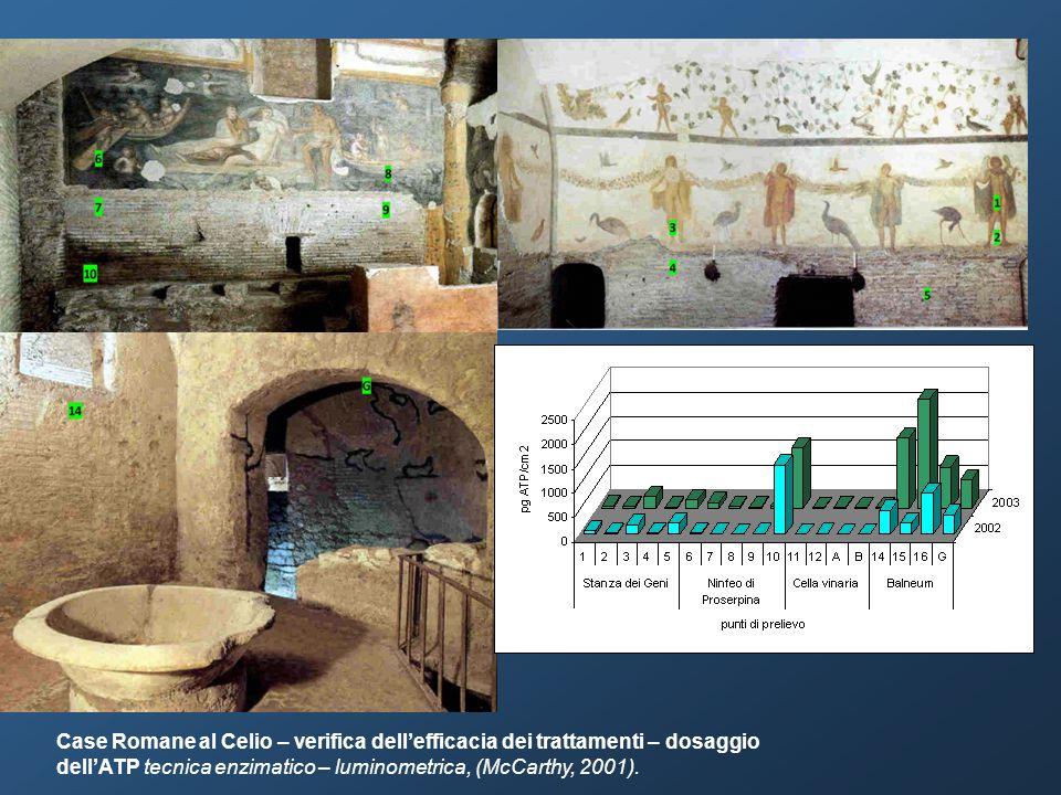 Case Romane al Celio – verifica dell'efficacia dei trattamenti – dosaggio dell'ATP tecnica enzimatico – luminometrica, (McCarthy, 2001).