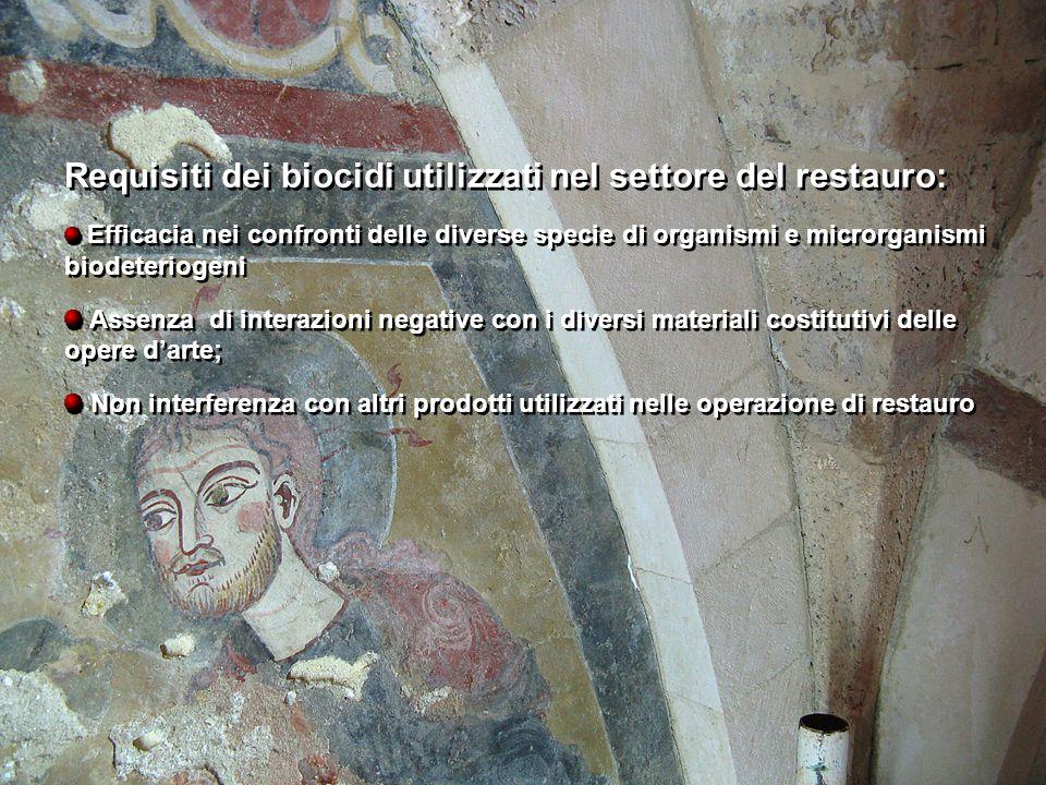 Requisiti dei biocidi utilizzati nel settore del restauro: