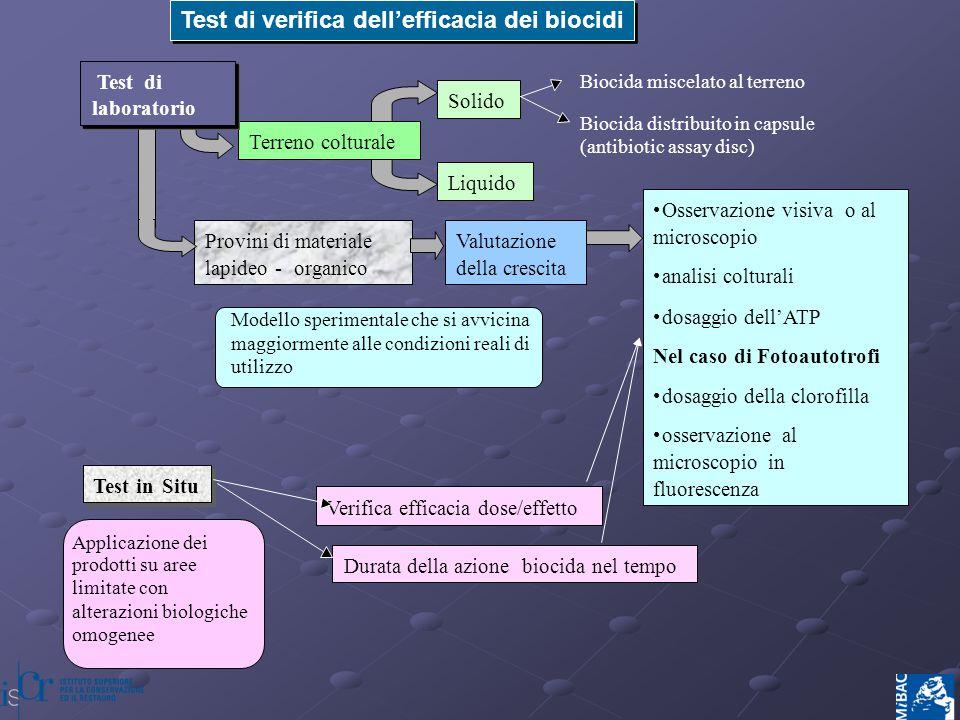 Test di verifica dell'efficacia dei biocidi