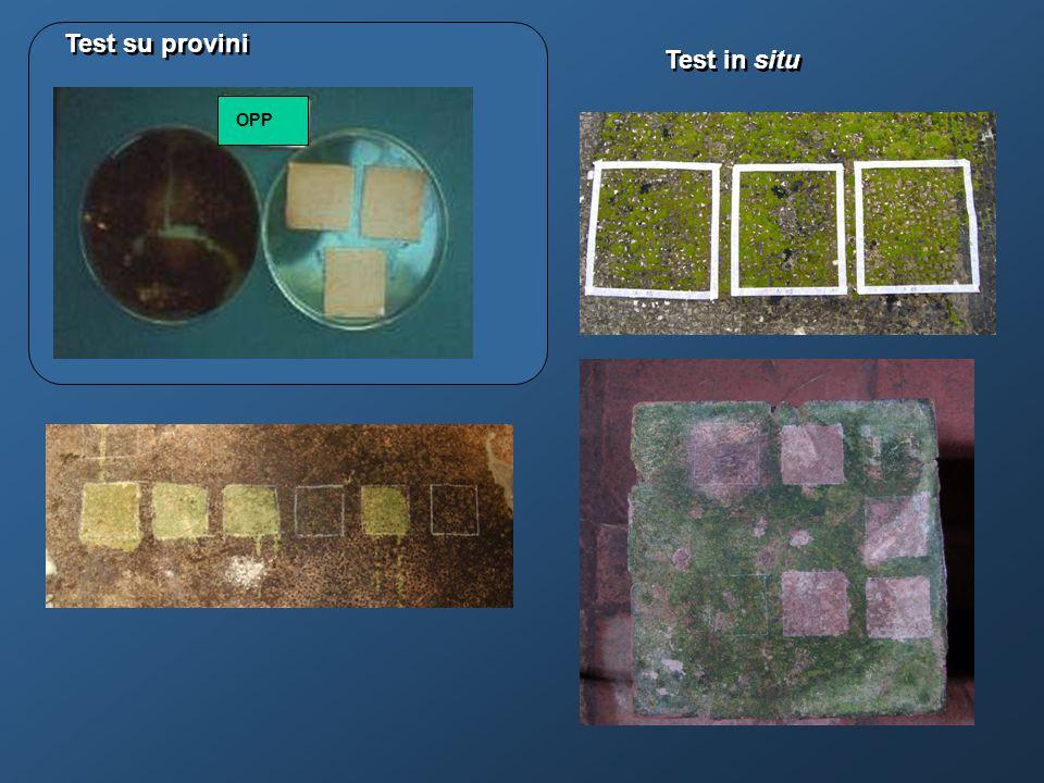 Test su provini Test in situ OPP