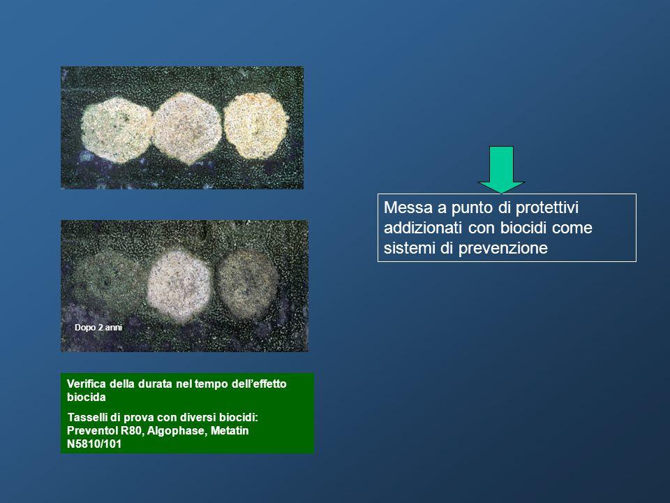 Messa a punto di protettivi addizionati con biocidi come sistemi di prevenzione