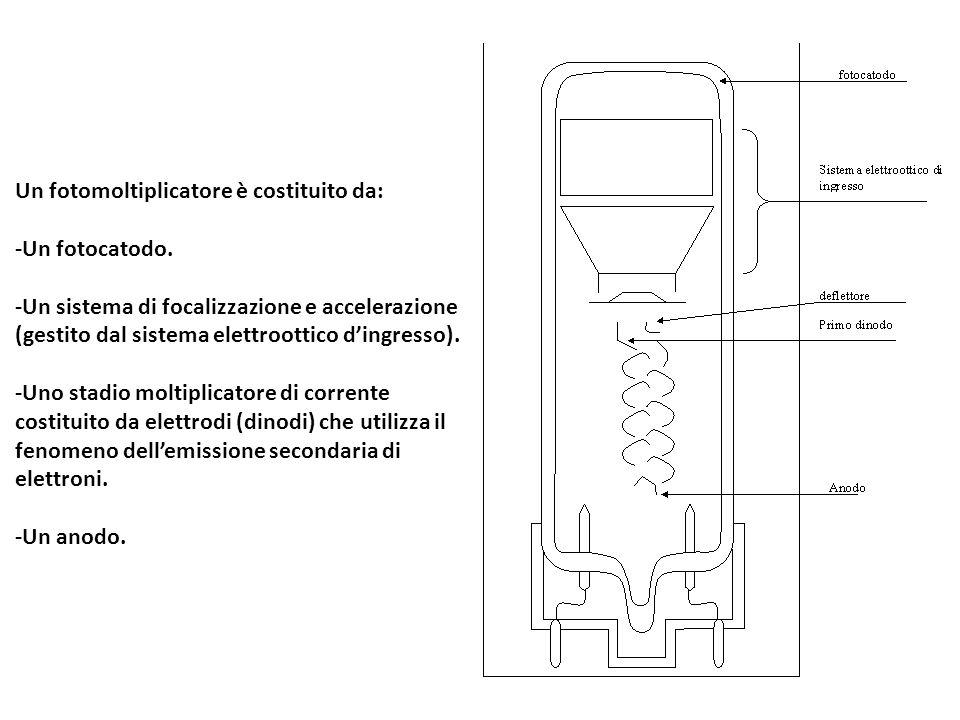 Un fotomoltiplicatore è costituito da: