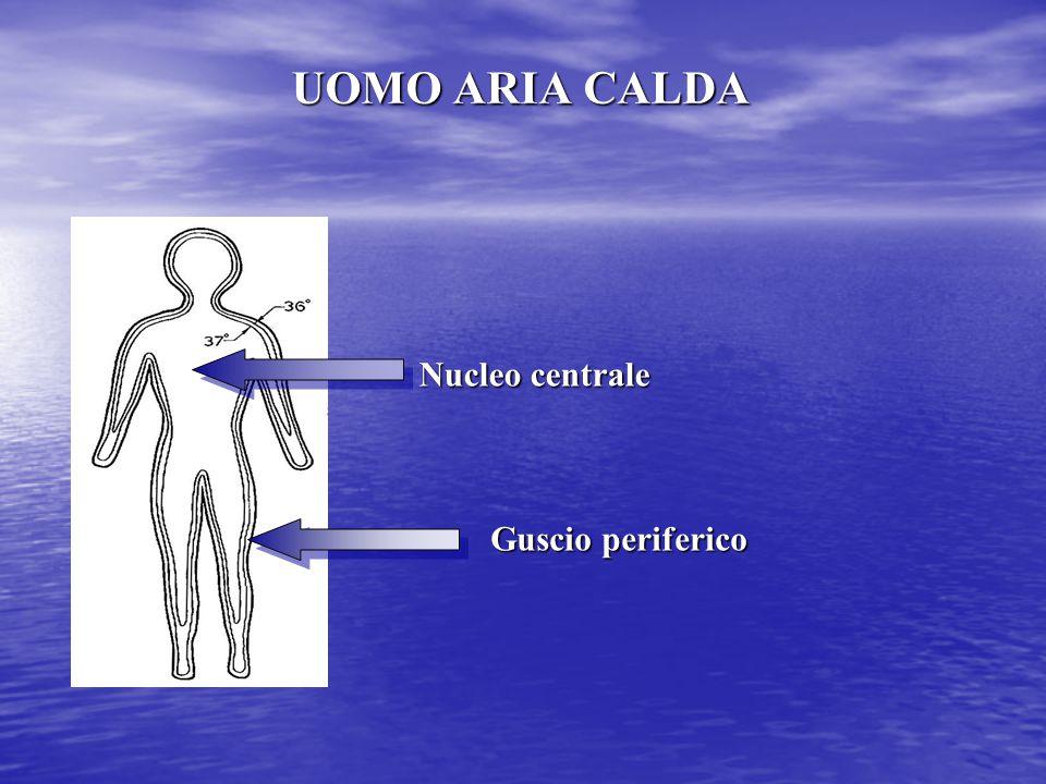UOMO ARIA CALDA Nucleo centrale Guscio periferico