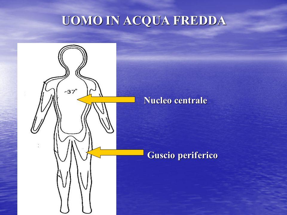UOMO IN ACQUA FREDDA Nucleo centrale Guscio periferico