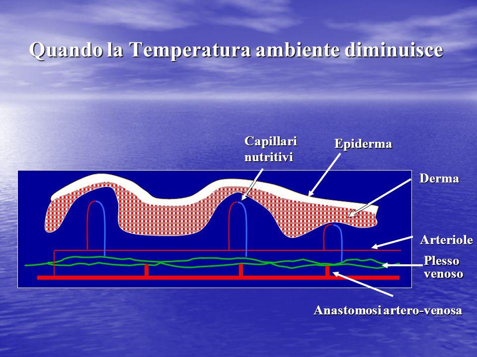Quando la Temperatura ambiente diminuisce