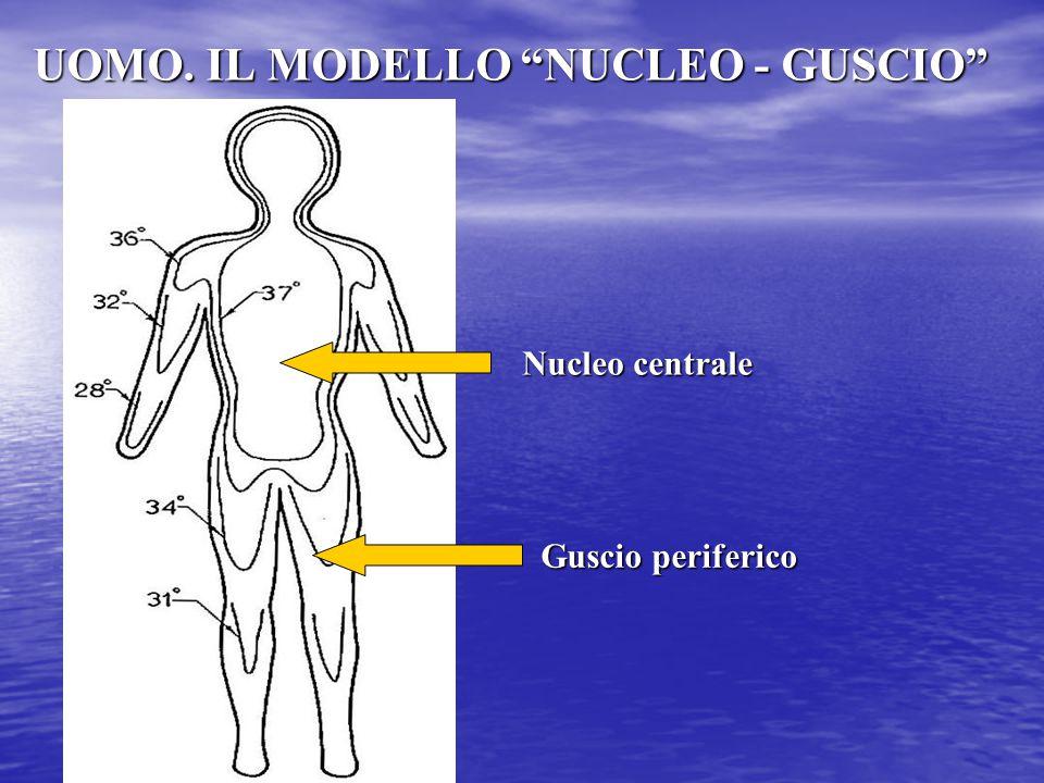 UOMO. IL MODELLO NUCLEO - GUSCIO