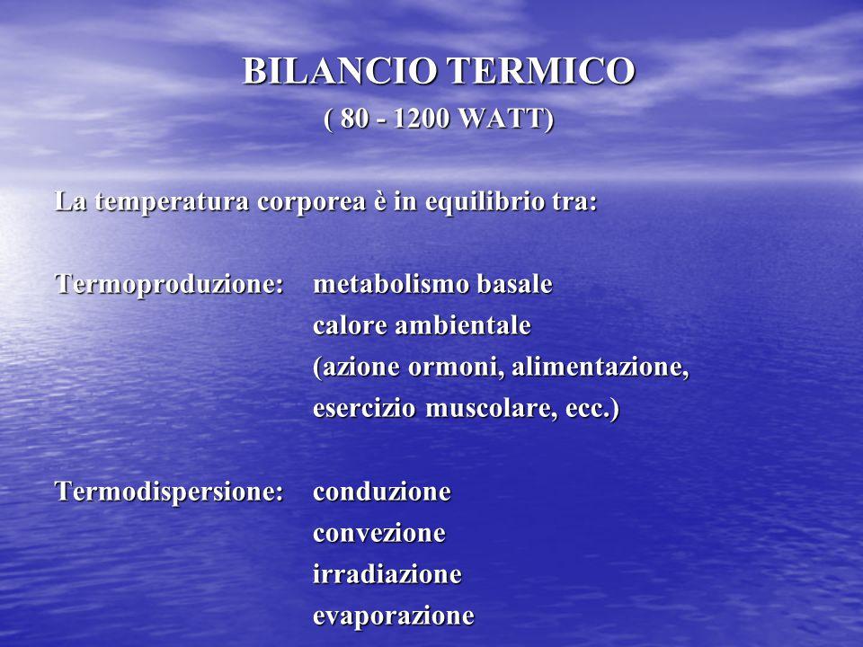 BILANCIO TERMICO ( 80 - 1200 WATT)