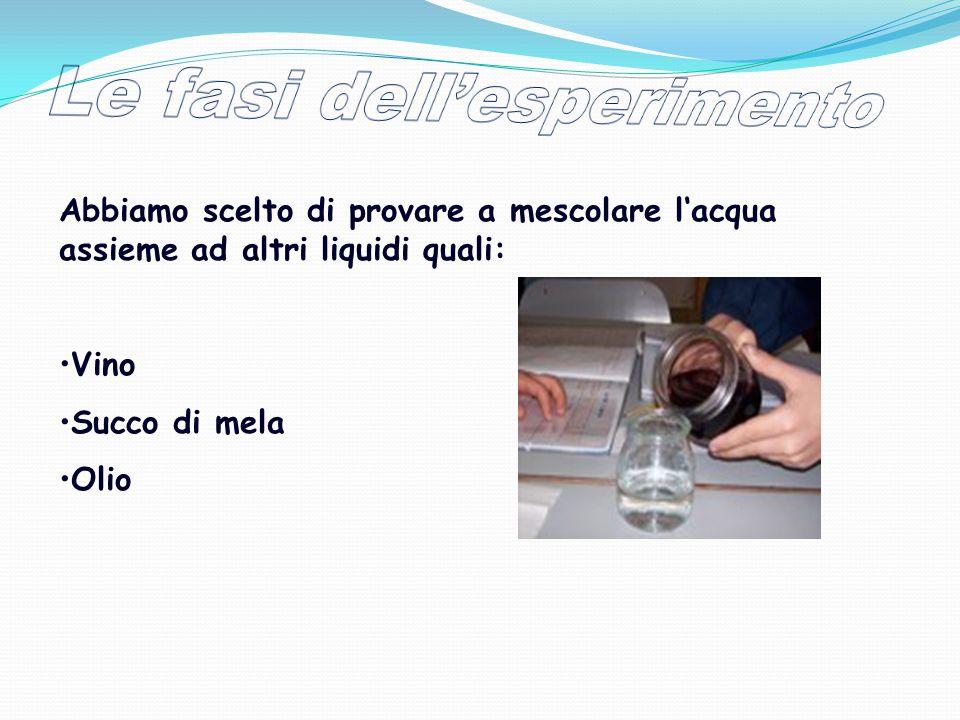 Le fasi dell'esperimento