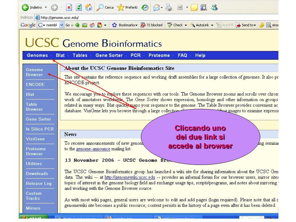 Cliccando uno dei due link si accede al browser