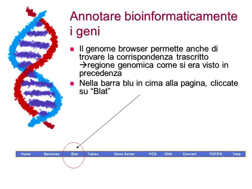 Annotare bioinformaticamente i geni