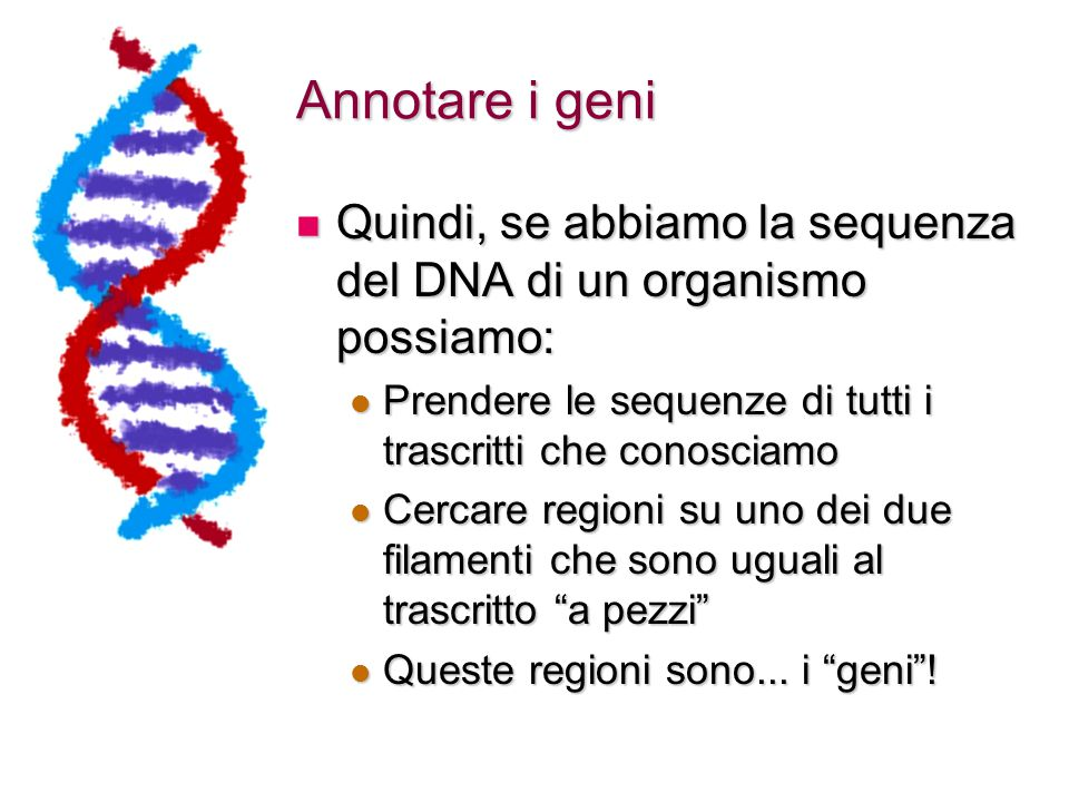 Annotare i geni Quindi, se abbiamo la sequenza del DNA di un organismo possiamo: Prendere le sequenze di tutti i trascritti che conosciamo.