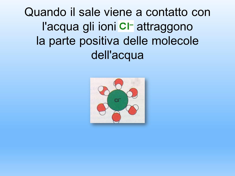 Quando il sale viene a contatto con l acqua gli ioni attraggono la parte positiva delle molecole dell acqua