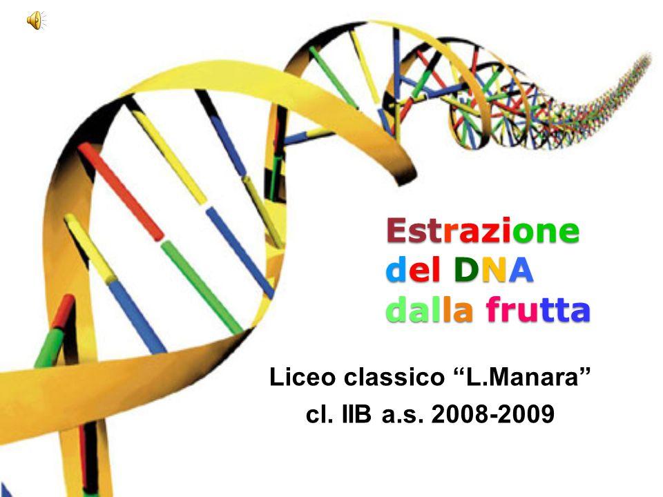 Estrazione del DNA dalla frutta