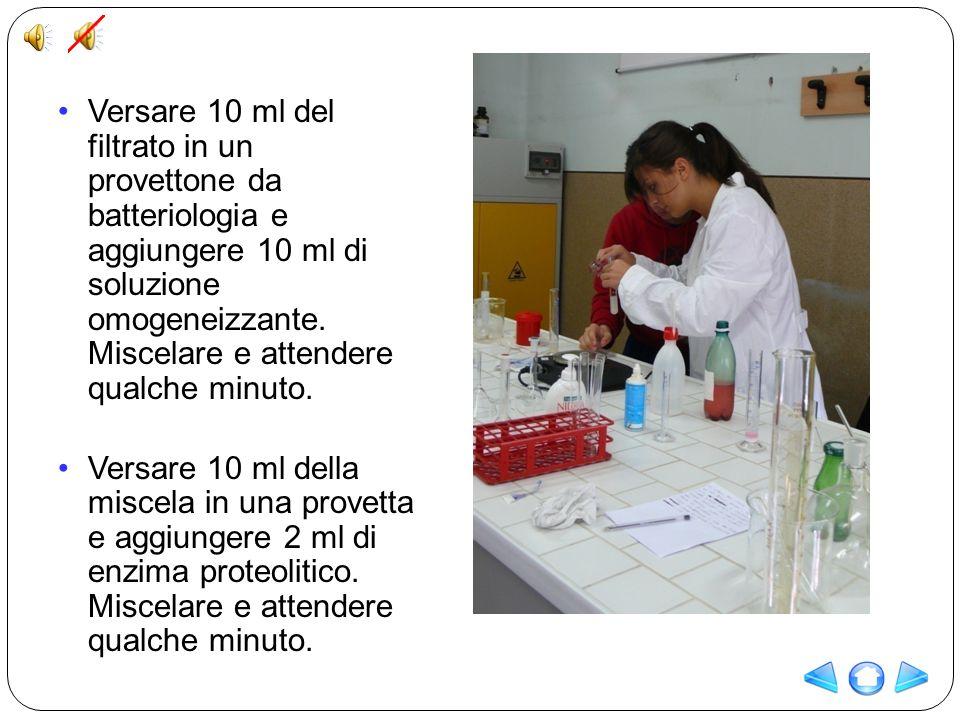 Versare 10 ml del filtrato in un provettone da batteriologia e aggiungere 10 ml di soluzione omogeneizzante. Miscelare e attendere qualche minuto.