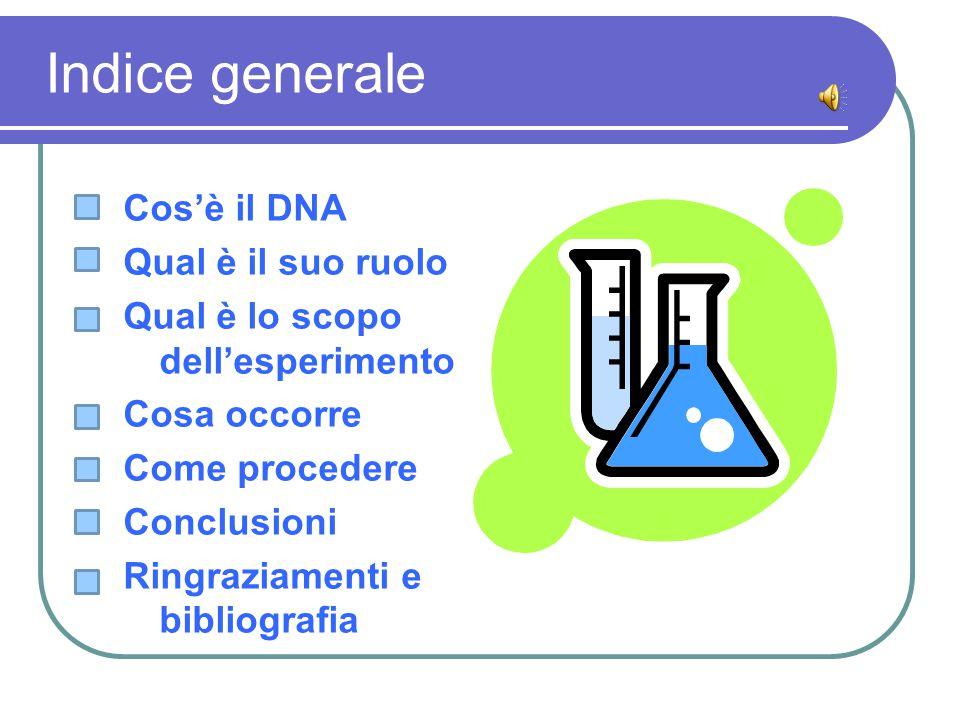Indice generale Cos'è il DNA Qual è il suo ruolo