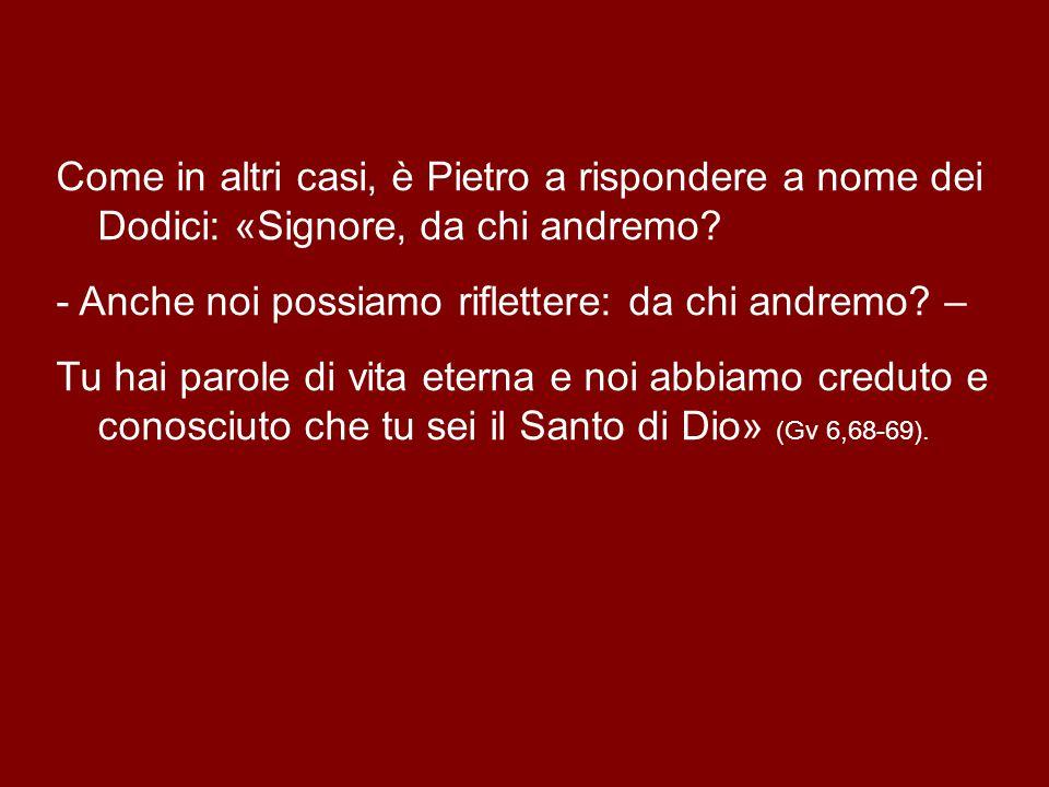 Come in altri casi, è Pietro a rispondere a nome dei Dodici: «Signore, da chi andremo.