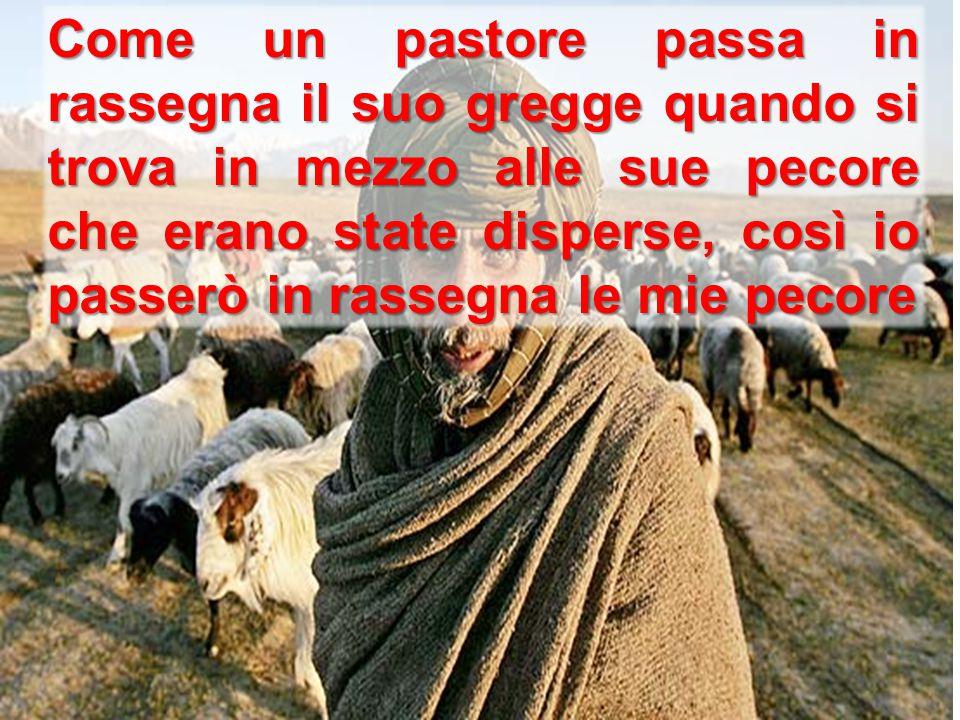 Come un pastore passa in rassegna il suo gregge quando si trova in mezzo alle sue pecore che erano state disperse, così io passerò in rassegna le mie pecore