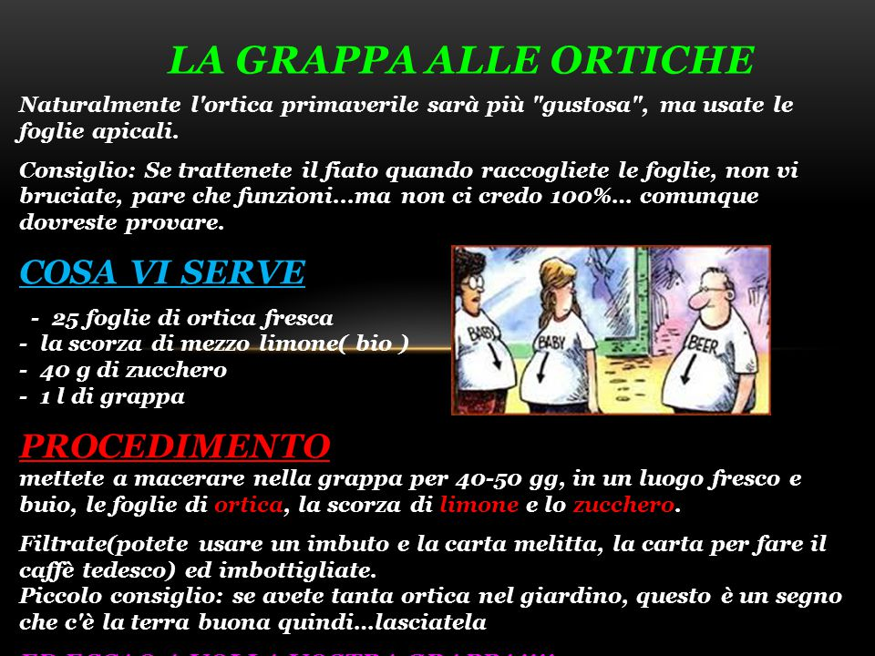 La grappa alle ortiche COSA VI SERVE