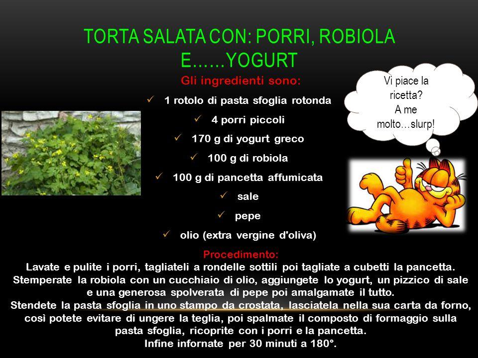 Torta salata con: porri, robiola e……yogurt