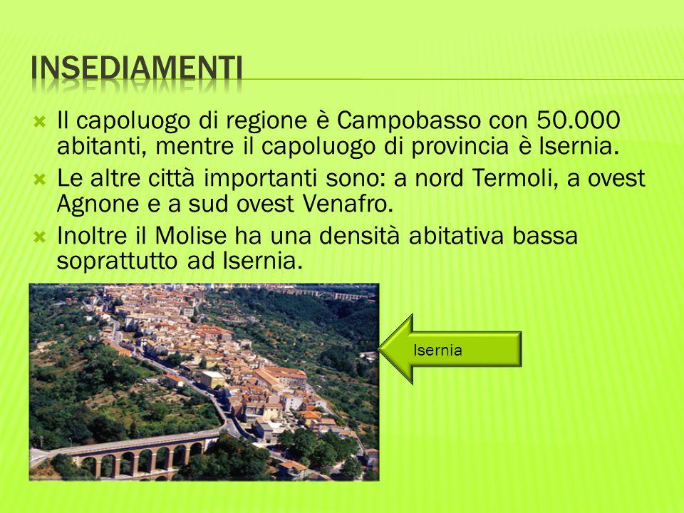 INSEDIAMENTI Il capoluogo di regione è Campobasso con 50.000 abitanti, mentre il capoluogo di provincia è Isernia.