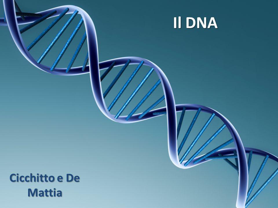 Il DNA Cicchitto e De Mattia