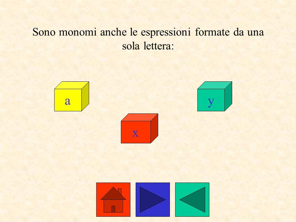 Sono monomi anche le espressioni formate da una sola lettera: