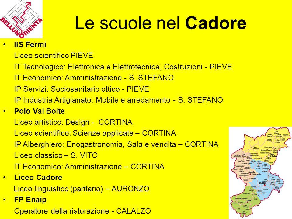 Le scuole nel Cadore IIS Fermi Liceo scientifico PIEVE