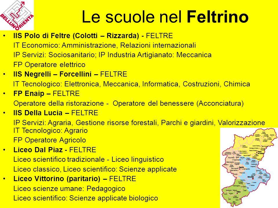 Le scuole nel Feltrino IIS Polo di Feltre (Colotti – Rizzarda) - FELTRE. IT Economico: Amministrazione, Relazioni internazionali.