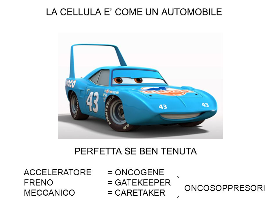 LA CELLULA E' COME UN AUTOMOBILE
